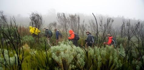 Chiltern Centre, Kilimanjaro Lemosho Route