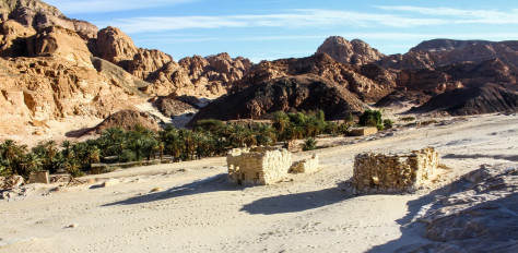 Sinai, Summit to Sea