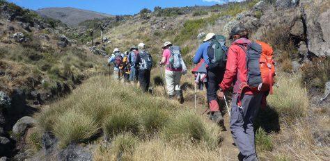 Love Her Wild, Kilimanjaro Lemosho Route
