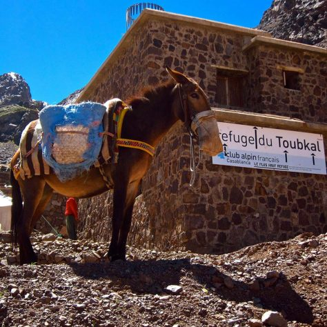 Toubkal, (Winter Ascent)
