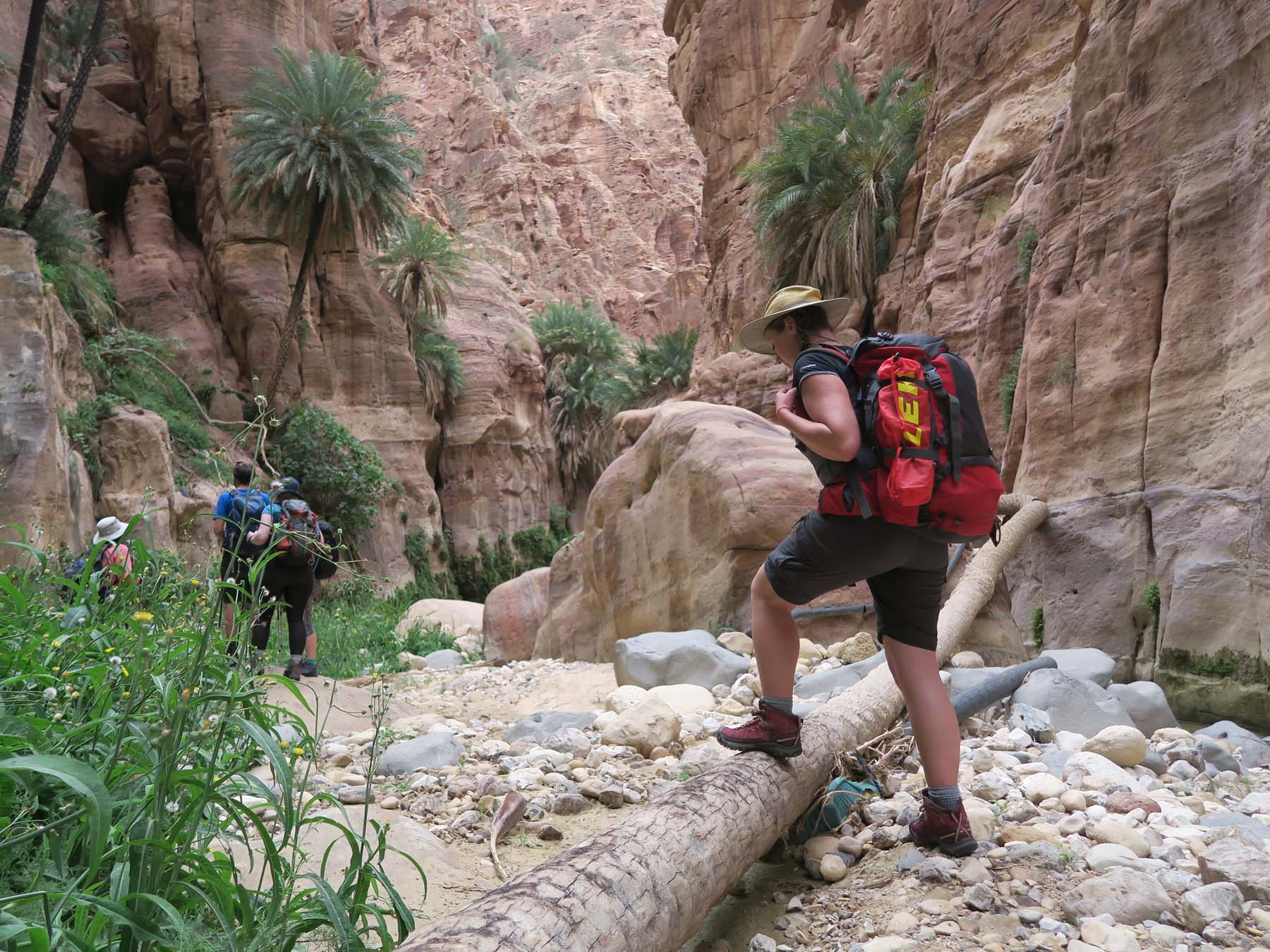 f070ce08d0 Pics   Vids. 360 s Petra and Desert adventure in Jordan