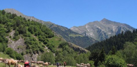 The Freedom Trail, Pyrenees